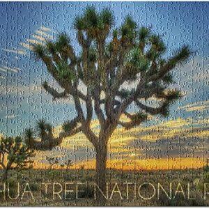 500 Piece Joshua Tree National Park Puzzle