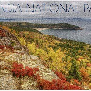 Acadia National Park Maine Jigsaw Puzzle