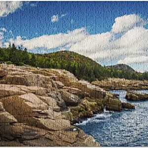 Acadia National Park Otter Cliffs Puzzle