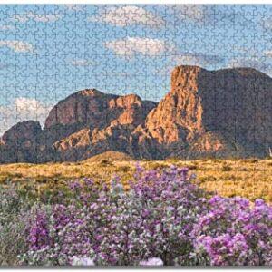 Big Bend National Park Puzzle