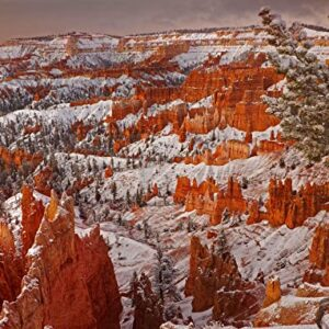 Bryce Canyon National Park Winter Puzzle