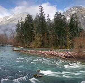 Elwha River Olympic National Park Jigsaw Puzzle