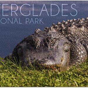Everglades National Park Florida Gator Puzzle