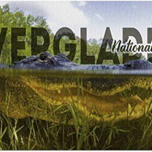 Everglades Underwater Alligator Puzzle