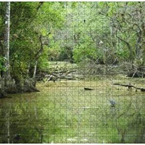 Florida Everglades Jigsaw Puzzle