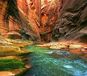 Grand Canyon River Puzzle