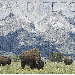 Grand Teton National Park Buffalo Puzzle
