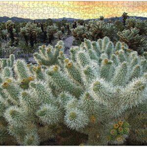 Joshua Tree National Park Cholla Garden Puzzle
