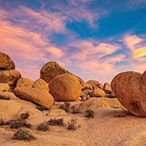 Joshua Tree National Park Heart Rock Puzzle