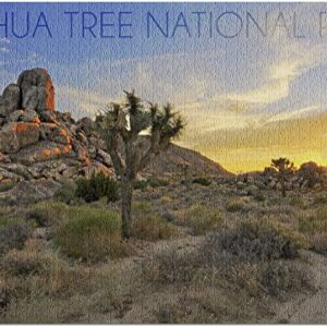 Joshua Tree National Park Jigsaw Puzzle