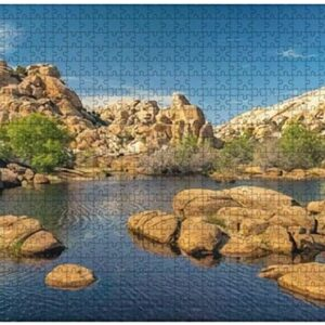 Joshua Tree National Park Pond Puzzle