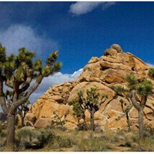 Joshua Tree National Park Puzzle
