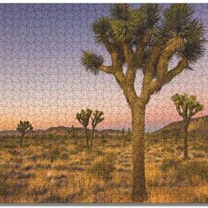 Joshua Tree National Park Sunset Puzzle