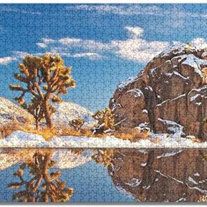 Joshua Tree National Park Winter Puzzle