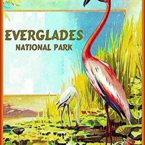 Kids Everglades National Park Puzzle