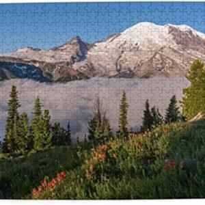 Mount Rainier National Park 500 Piece Puzzle