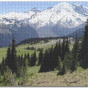 Mount Rainier National Park Jigsaw Puzzle