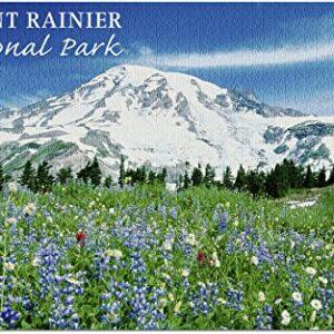 Mount Rainier National Park Spring Puzzle