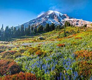 Mount Rainier National Park Washington Jigsaw Puzzle