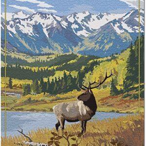 Olympic National Park Hurricane Ridge Elk Puzzle