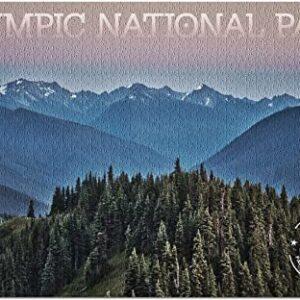 Olympic National Park Hurricane Ridge Puzzle