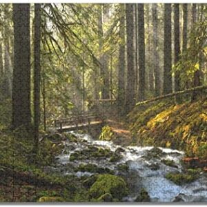 Olympic National Park Jigsaw Puzzle