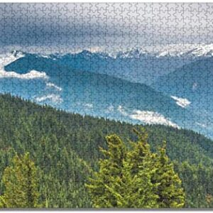 Olympic National Park Puzzle For Kids