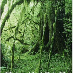 Olympic National Park Rainforest Puzzle