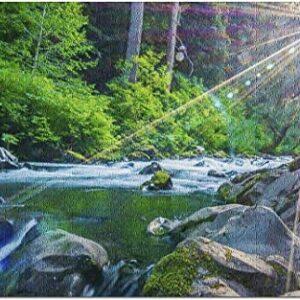 Olympic National Park Sol Duc Falls Hoh Rainforest Puzzle