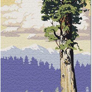 Redwood National Park California Puzzle