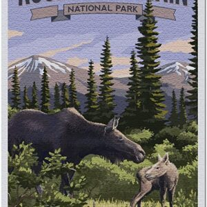 Rocky Mountain National Park Moose And Calf Puzzle