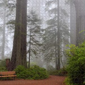 Sequoia National Park Puzzle