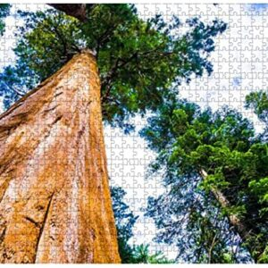 Sequoia National Park Vertical Redwood Jigsaw Puzzle