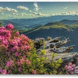 Shenandoah National Park Flowers Puzzle