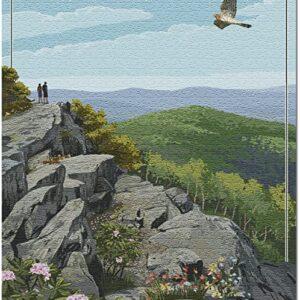 Shenandoah National Park Hawk Puzzle