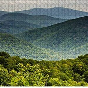 Shenandoah National Park Virginia Forest Puzzle