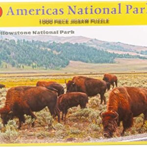 Yellowstone National Park Grazing Bison Jigsaw Puzzle