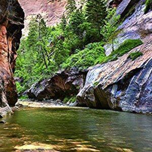 Zion National Park Virgin River Puzzle
